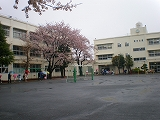 P4050134.jpg