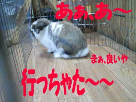 小五郎 無視される? (4)