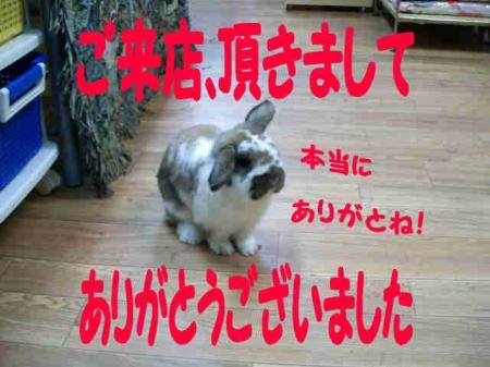 小五郎 ありがとう