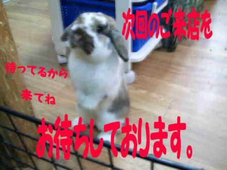 小五郎 ありがとう 2