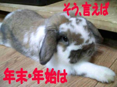 小五郎からのお知らせ