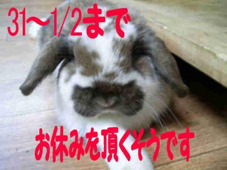 小五郎からのお知らせ 2