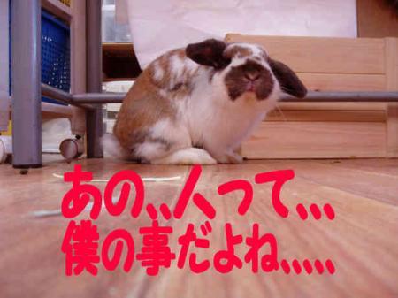 小五郎、、、