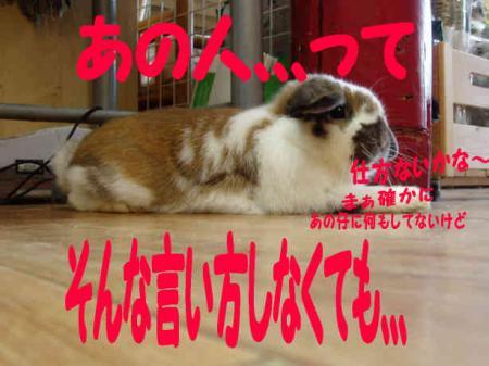 小五郎、、、2
