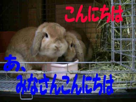 雷人・まる 3