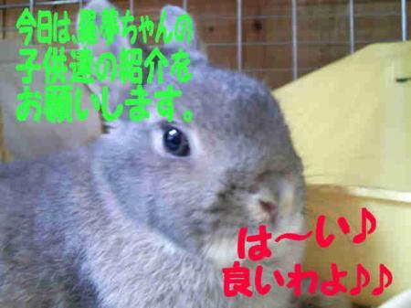 羅夢・・・ 3