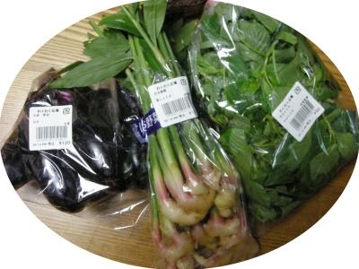 農家の野菜