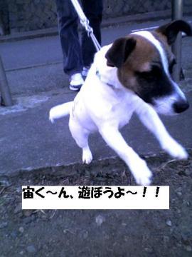 asobouyo1.jpg