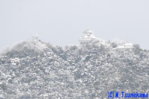 岐阜城雪景色