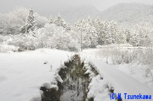 金華山雪景色1