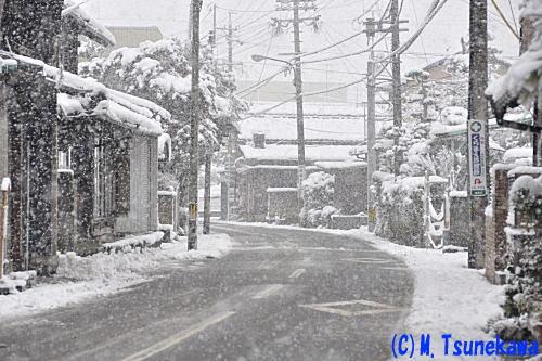 雪の岐阜市内