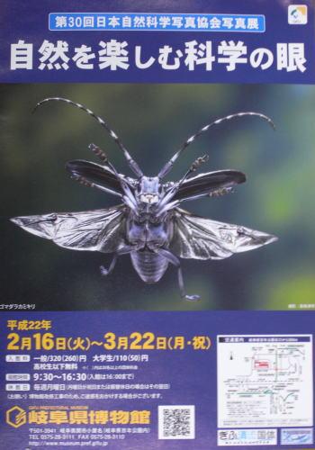 SSP・岐阜展チラシ