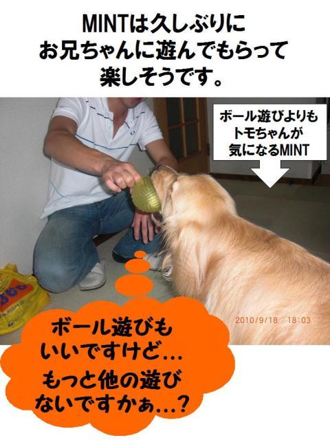 友達がぃっぱいpart2