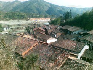20090117.jpg