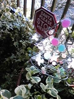 2008年クリスマスガーデニング