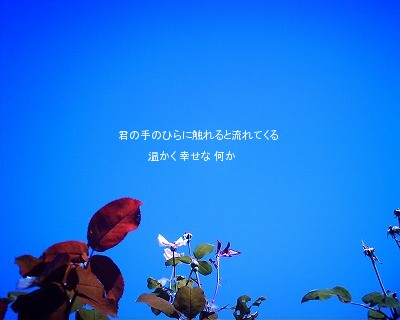 090922kiminote.jpg