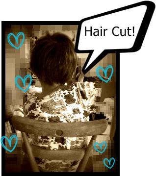 211 cut