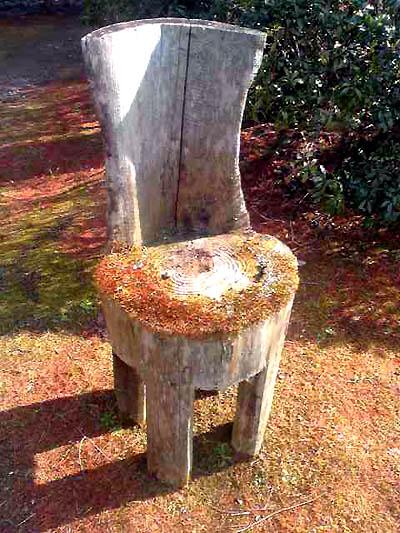 森林公園の椅子