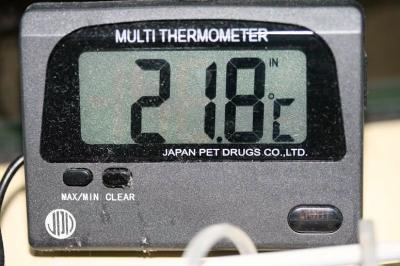 21.8℃って!