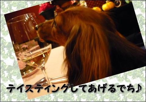 2008112407.jpg