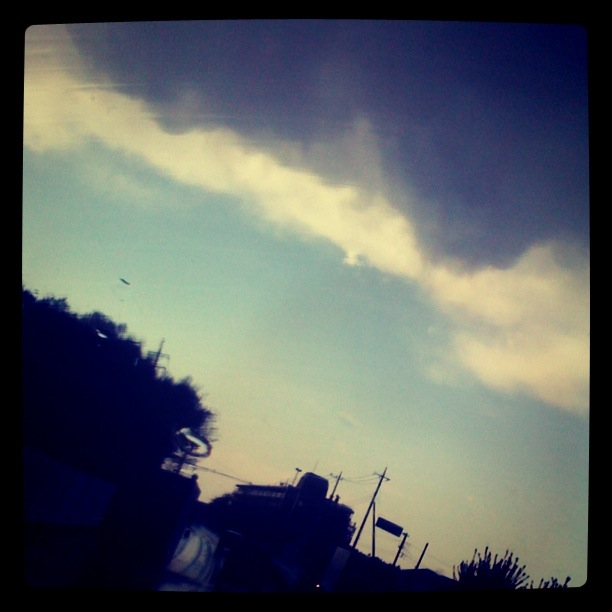 photo-8_20110425234758.jpg