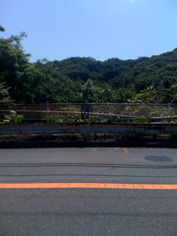photo_20100605051136.jpg