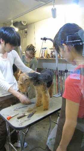 blog3_20110614034814.jpg