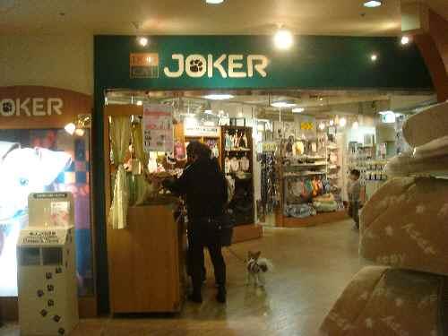 joker_20091028011613.jpg