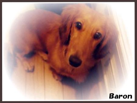 Baron0103-02.png