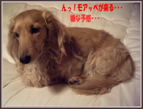 blog0901-03.png