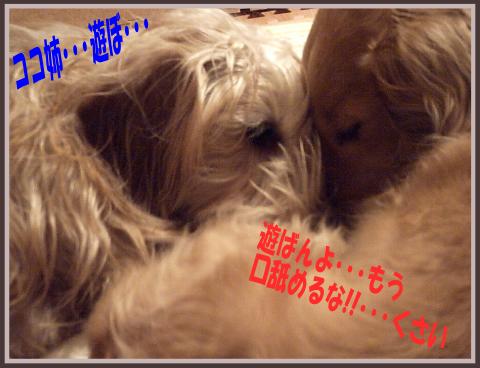 blog0901-04.png