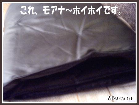 moa0923-01.png
