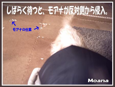 moa0923-02.png