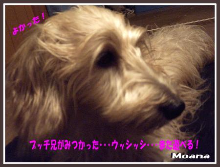 moa1021-05.png