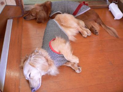 moca&len5 2/14/2009