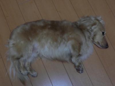len14 2/14/2009