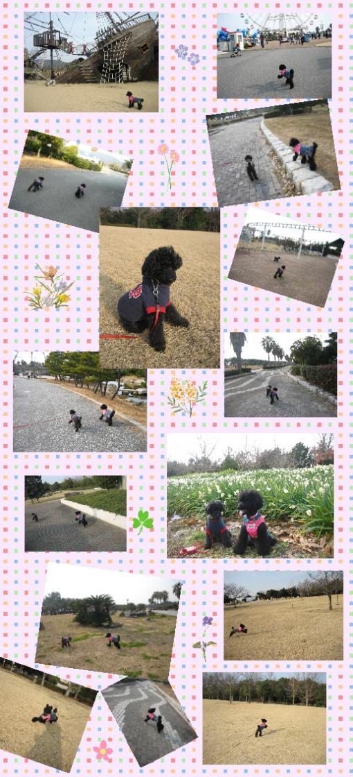 赤穂海浜公園3