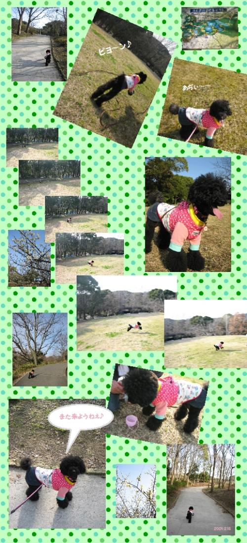 奥須磨公園3