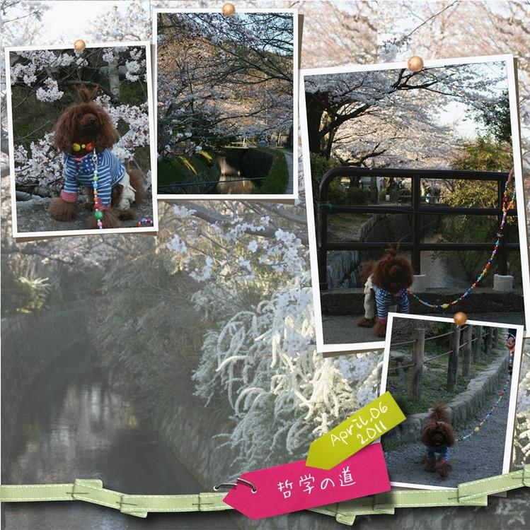 20110406-14.jpg