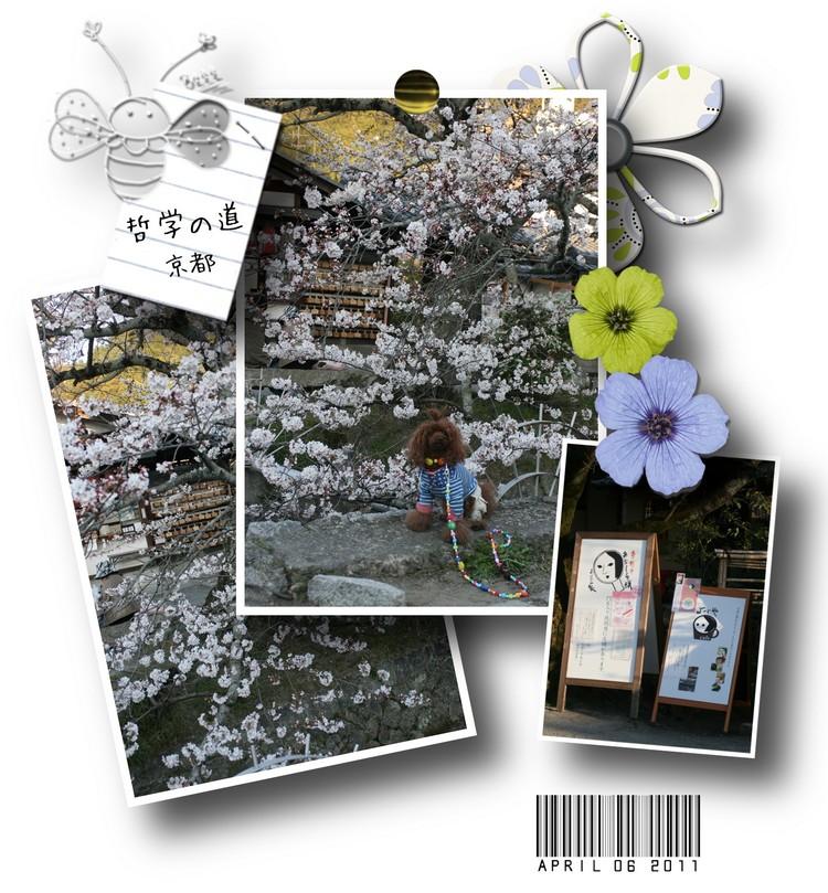 20110406-15.jpg