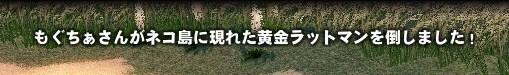 2009_11_13_001.jpg