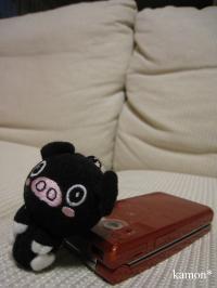 ケータイと黒豚ちゃん