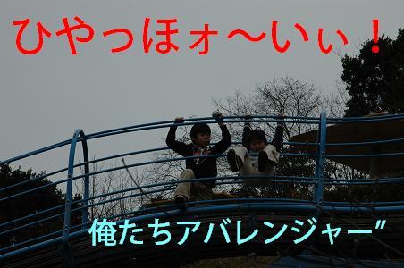 DSC_6774.jpg