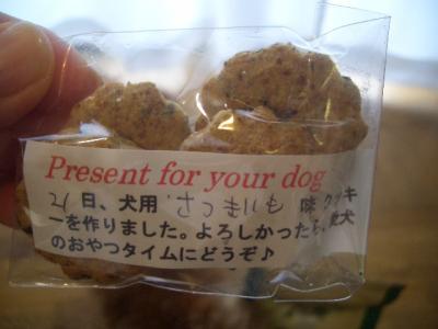グリニーズのおまけクッキー