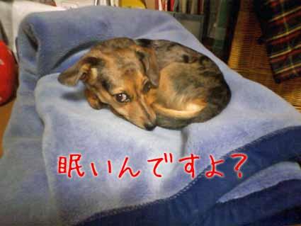 眠いんですよ?