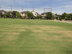 2010.8.28芝生メンテ 003