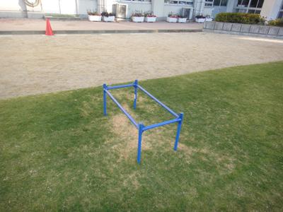 2010.12.4芝生メンテ 004