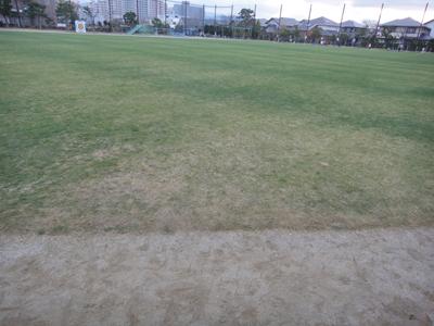 2010.12.16芝生の状況 001