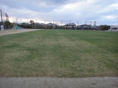 2010.12.16芝生の状況 008