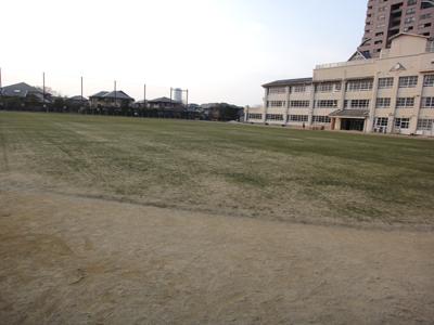 2011.2.3芝生の状況 006
